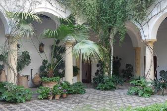 Patio del Recibo. Viana. Córdoba