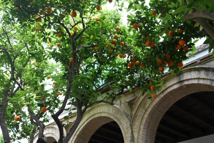 Patio de la Capilla. Viana. Córdoba