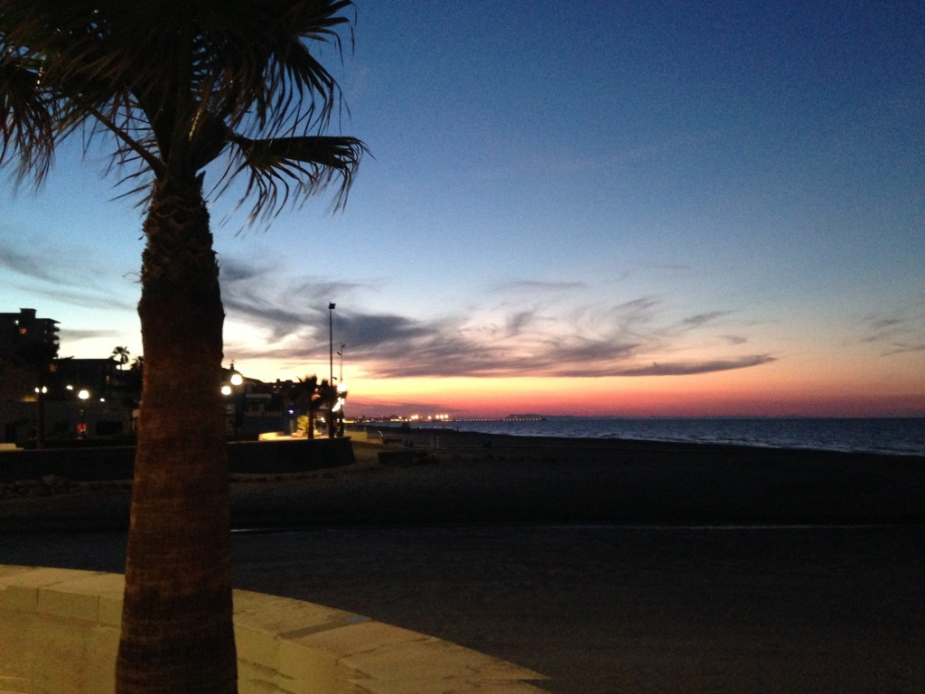IMG_2538 Vista playa
